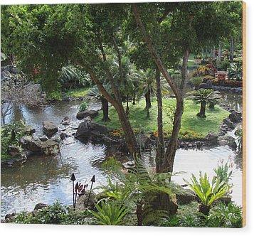 Hawaiian Pond  Wood Print by Dee  Savage