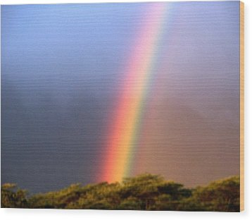 Hawaiian Rainbow Wood Print