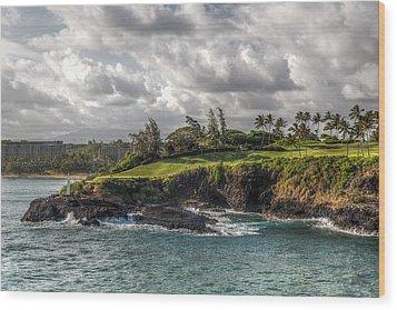 Hawaiian Shores Wood Print by Bill Lindsay