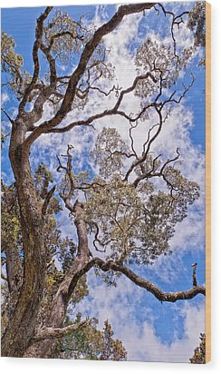 Hawaiian Sky Wood Print