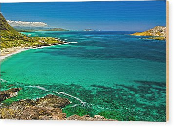 Hawaiian Water Wood Print by Michael Misciagno