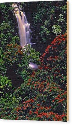 Hawaiian Waterfall With Tulip Trees Wood Print