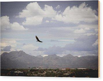 Hawk - 2013-242 Wood Print by Judi FitzPatrick