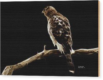 Hawk -  2950 - F Wood Print by James Ahn