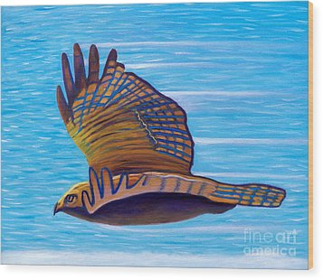 Hawk Speed Wood Print by Brian  Commerford