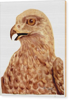 Hawk Wood Print by Terry Frederick