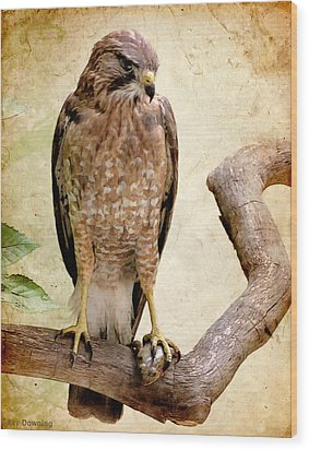 Hawk With Fish Wood Print by Ray Downing