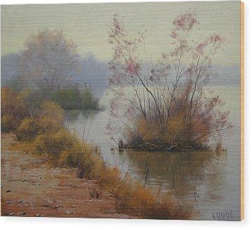 Hawksbury River Painting Wood Print by Graham Gercken
