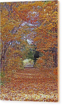 Hawthorn Hollow Wood Print