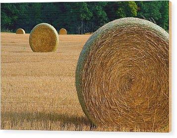 Hay Bales Wood Print by Chuck De La Rosa