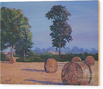 Hay-bales In Evening Light Wood Print by John Clark
