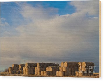Hay Bales Wood Print by James BO  Insogna