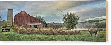 Hay Bales Wood Print by Lori Deiter