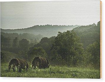 Hay Bales Wood Print by Shane Holsclaw