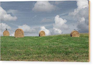 Hay Bales Wood Print by Steven Michael