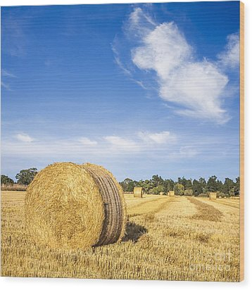 Hay Bales Under Deep Blue Summer Sky Wood Print by Colin and Linda McKie