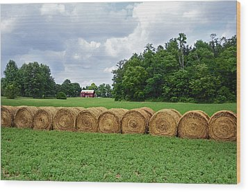 Hay Day Wood Print by Steven  Michael