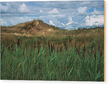 Hay Mound Wood Print by Mike Feraco