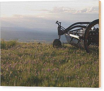 Hay Rake Wood Print by Jenessa Rahn