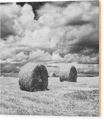 Haybales Uk Wood Print by Jon Boyes
