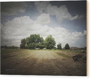 Haying At Angustown Wood Print by Cynthia Lassiter