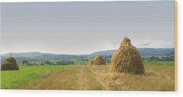 Hayrack Panorama Wood Print