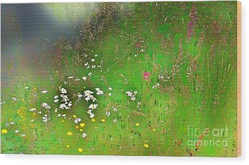 Hazy Meadow Abstract Wood Print