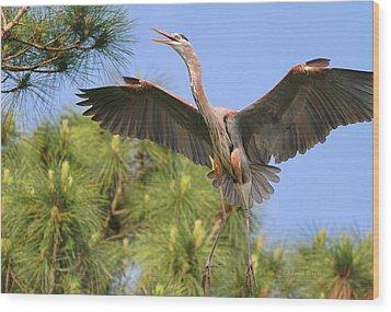 Hb In The Pines Wood Print by Deborah Benoit