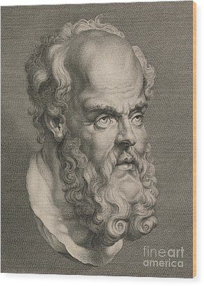 Head Of Socrates Wood Print by Anonymous
