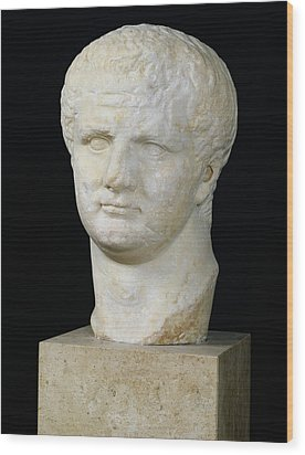 Head Of Titus Wood Print by Anonymous