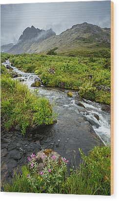 Headwaters In Summer Wood Print