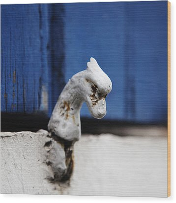 Heady Shutter Catch Wood Print