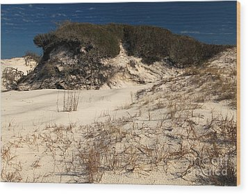 Healthy Dunes Wood Print by Adam Jewell
