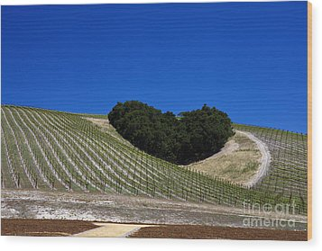 Heart Hill Paso Robles Wood Print by Jason O Watson
