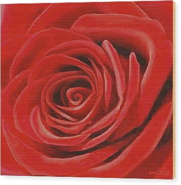 Heart Of A Red Rose Wood Print