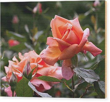 Wood Print featuring the photograph Heart Of Gold Roses by Rona Black
