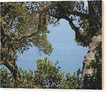 Heart Of Nepenthe - Big Sur Wood Print by Phoenix The Moody Artist
