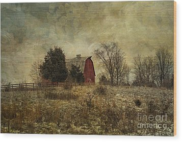 Heart Of The Farm Wood Print by Terry Rowe