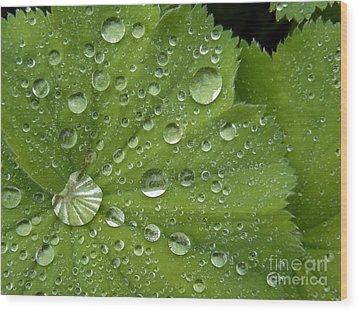 Heart Overflowing Wood Print by Agnieszka Ledwon