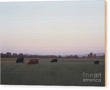 Wood Print featuring the photograph The Kittitas Valley I by Susan Parish