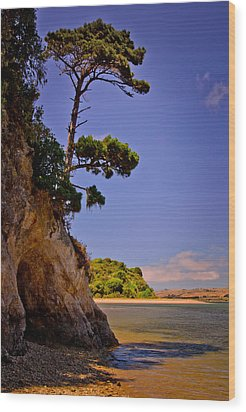 Wood Print featuring the photograph Heart's Desire Beach by Janis Knight