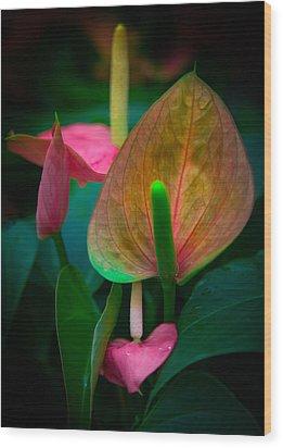 Hearts Of Joy Wood Print by Karen Wiles