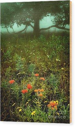 Heaven In The Gloom I - Blue Ridge Parkway Wood Print by Dan Carmichael