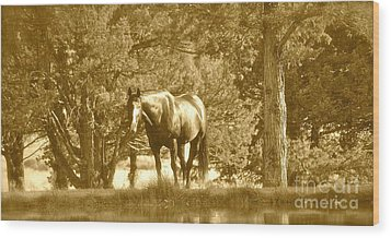 Wood Print featuring the photograph Heaven On Earth by Barbara Dudley