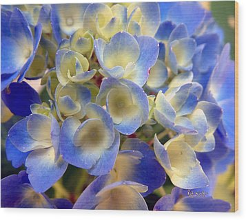 Heavenly Blues Wood Print by RC deWinter