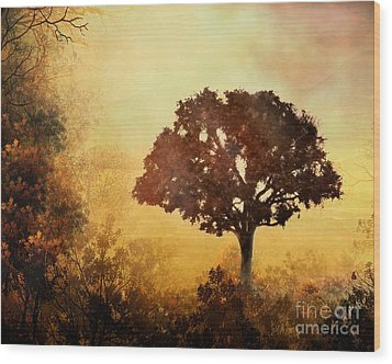 Heavenly Dawn Wood Print by Peter Awax