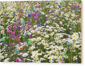 Wood Print featuring the photograph Heavenly Flower Bed by Larry Landolfi