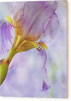 Heavenly Iris 2 Wood Print by Theresa Tahara