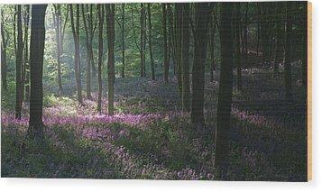 Heaven's Garden Wood Print by John Chivers