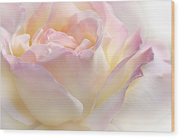 Heaven's Pink Rose Flower Wood Print by Jennie Marie Schell